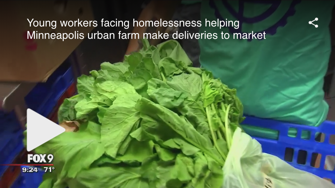 "Fox 9 - ""Teens facing homelessness help Minneapolis urban farm"""